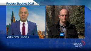 Calgary economist calls federal budget more 'measured' and 'modest' than many expected (05:09)