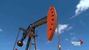 Alberta Premier Jason Kenney calls on oil industry to catch up on tax bills (01:55)