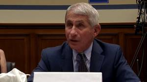 Coronavirus: Dr. Fauci says multiple COVID-19 vaccine candidates are moving at 'very rapid pace'