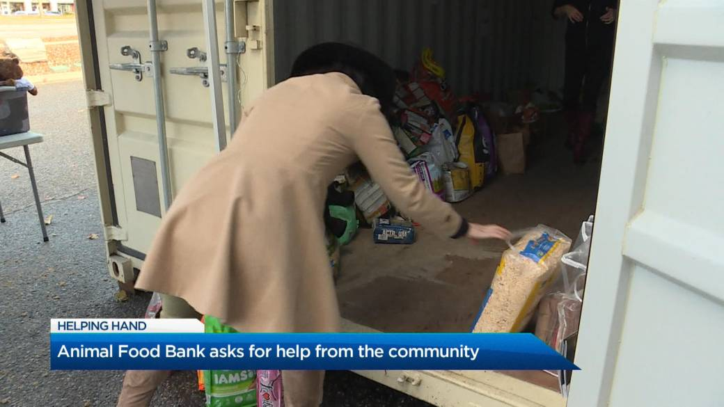 Click to play video 'The Animal Food Bank celebrates first anniversary'