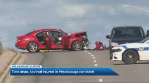 2 people killed, 6 others sent to hospital after head-on collision in Mississauga (02:21)