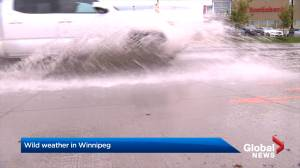 Winnipeg roads flood, people trapped in cars as thunderstorms roll through Manitoba