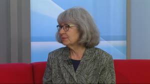 Jan Norris on Green Party's immigration platform