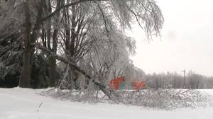 Parts of Ontario sees icy conditions after storm blows through, but thaw coming soon (01:26)