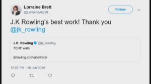 BC Liberal candidate Lorraine Brett's controversial tweets (02:48)