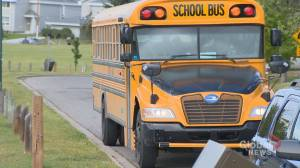 Driver training blamed for Calgary school bus delays