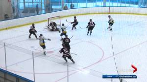 Alberta Colleges Athletic Conference to explore options to hold a season this winter and spring (02:02)