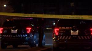 Calgary police investigate deadly stabbing in Penbrooke Meadows (00:58)