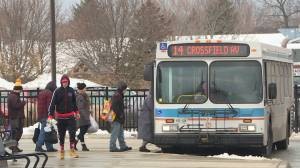 Kingston may look at dedicated municipal transit lanes