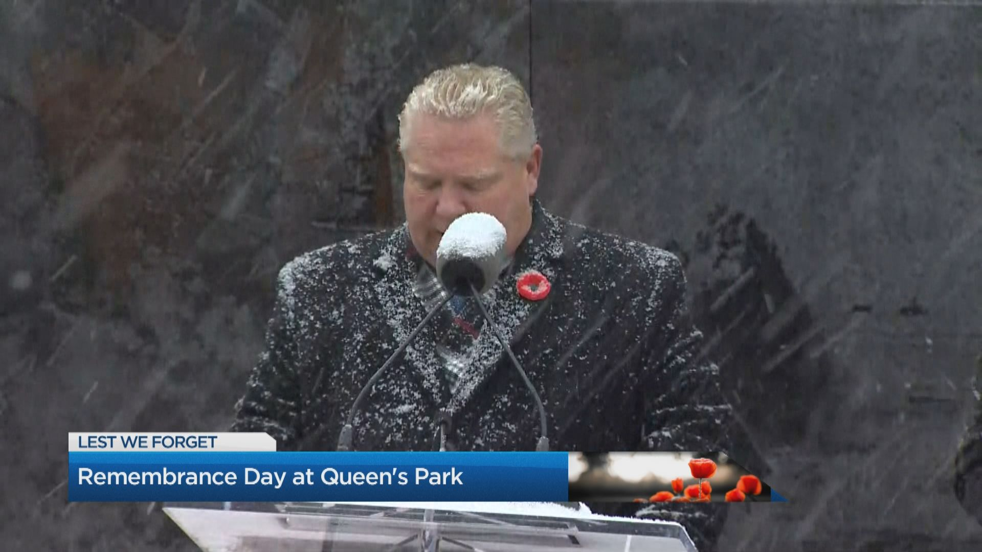 People gather at Queen's Park for Remembrance Day
