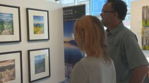 Artists come together to help raise funds in Kelowna art exhibit (01:38)