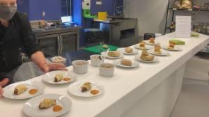 Peterborough's Noblegen uses euglena to make vegan products (02:02)