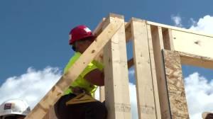 Habitat for Humanity women's build slowly taking shape