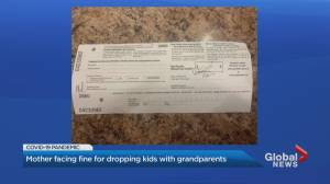 Coronavirus: Ontario mother fined $880 for allegedly violating provincial stay-at-home order (02:38)