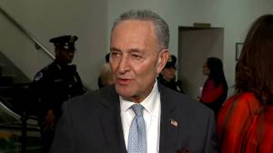 Schumer says 'fair' impeachment trial needs 'relevant witnesses and documents'
