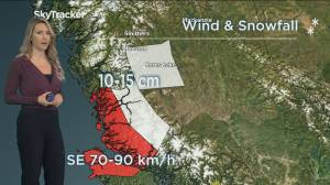 B.C. morning weather forecast: Dec. 29 (02:21)