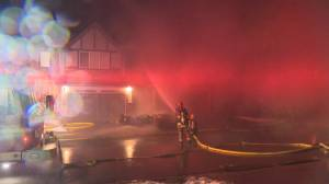 Fire destroys multiple homes in Calgary's Royal Oak (02:19)