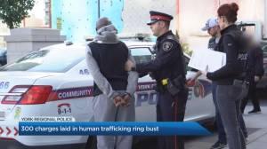 York Regional Police bust human trafficking ring spanning Ontario, Quebec