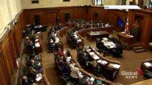Move to improve diversity has sparked a war of words at Montreal city hall (01:57)
