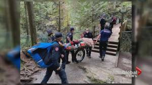 Bystanders save man who slipped into Lynn Canyon water (01:04)