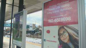Edmonton woman buys LRT ads to find a kidney donor
