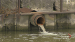 Researchers to start testing sewage for COVID-19