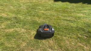 Tech Talk: revolutionizing lawn care with robotic mowers