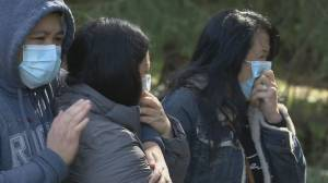 Friends of woman found murdered in Burnaby park last week in shock and disbelief (02:00)