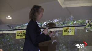 Extinction Rebellion co-founder hammers glass window at Department for Transport