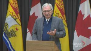 Blaine Higgs says roll-out of now-cancelled health-care reforms 'not well thought out'