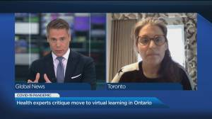 Health experts critique move to virtual learning in Ontario (05:45)