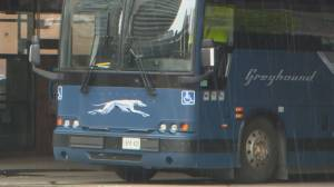 Greyhound Canada to cut all bus routes, end operations (01:48)