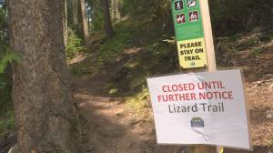 Safety changes underway at Sicamous park after fatal falls