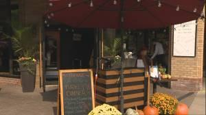 Coronavirus: Many businesses in Ontario face temporary closures again (02:34)