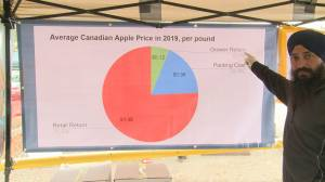 BC Fruit Growers' Association sheds light on tough returns for apple farmers (02:02)