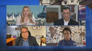 'The West Block' political panel sets the stage for election day (14:02)