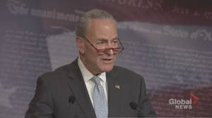 Schumer says he doesn't believe 'a majority' of Senators have decided on Trump's guilt