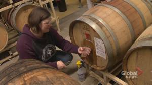 Tapping into the potential of women in Alberta's craft beer industry