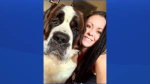 Facebook group helps in search for dog, missing nearly 100 days (02:27)