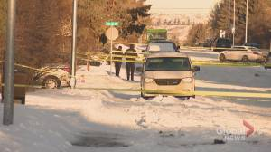 Calgary police investigating death of woman found in Bowness street as domestic incident