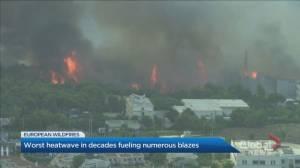 Worst heatwave in decades fuels numerous blazes in Greece, Turkey (01:45)
