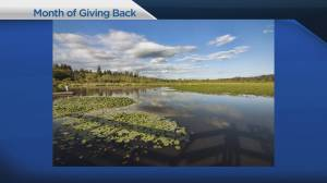 Month of Giving Back: Pacific Parklands Foundation