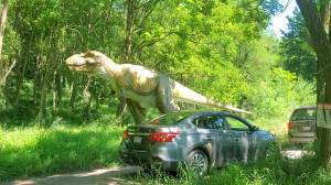 'Dinosaur Drive-Thru' offers COVID-safe fun for families (01:33)