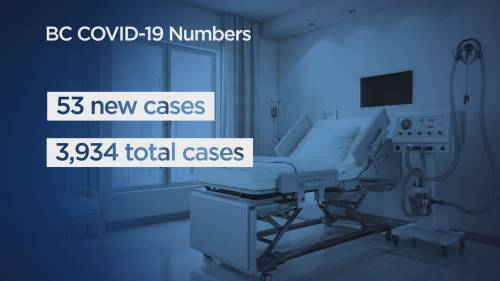 B.C. officials report 53 new cases of COVID-19, no additional deaths | Watch News Videos Online
