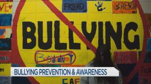 Tips to keep kids safe from cyberbullying
