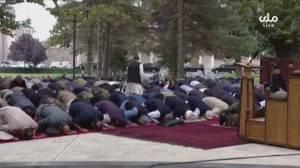 Canadian veterans mobilize to help, as Taliban targets Afghan translators (02:22)