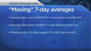 Coronavirus: Remote B.C. First Nations expect to receive vaccine, Dr. Bonnie update at 3 p.m. (04:34)
