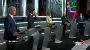 Political expert questions campaign focus (01:50)