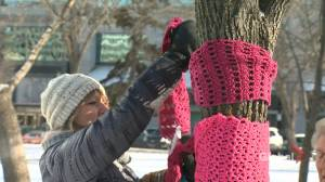 Hundreds of scarves pop up in Regina's Victoria Park to help those in need