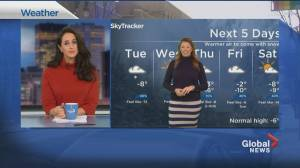 Global News Morning weather forecast: Tuesday January 19, 2021 (01:47)